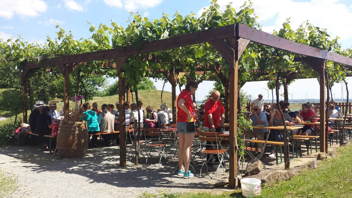 Weinbau & Buschenschank Gratzer-Sandriester, Kellergasse Prellenkirchen