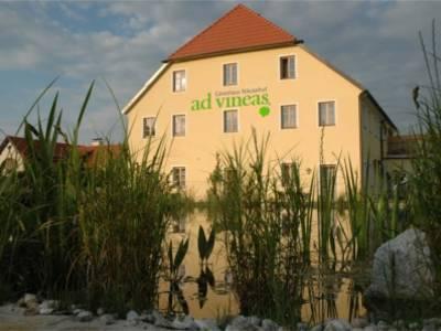 unser Gästehaus befindet sich direkt neben dem hauseigenen Badeteich