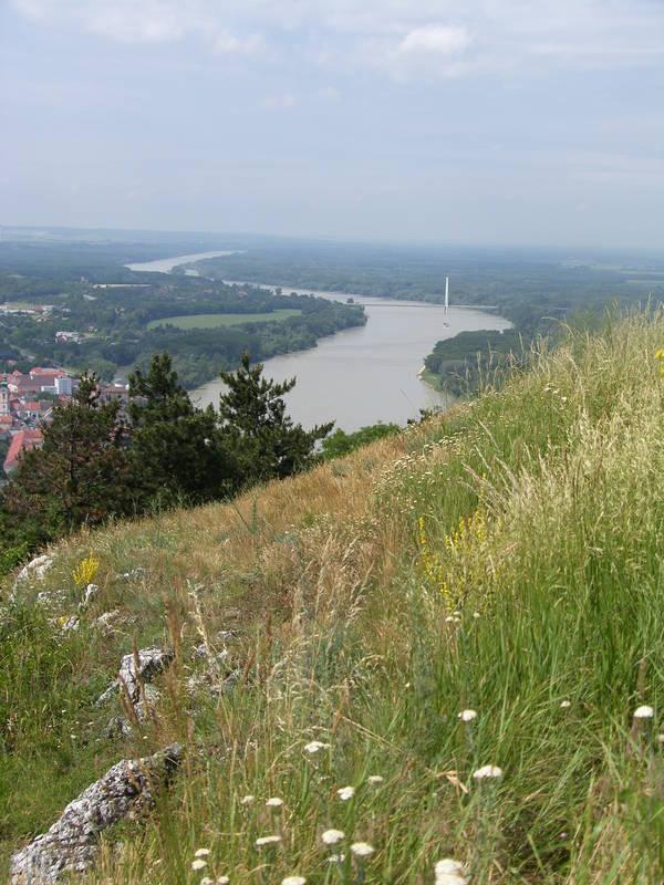 Aussicht Braunsberg