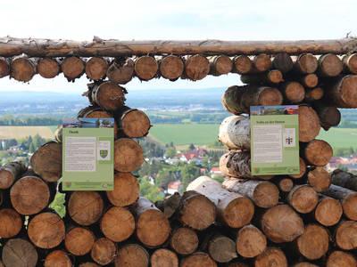 Ausblick Balkon Tullnerfeld