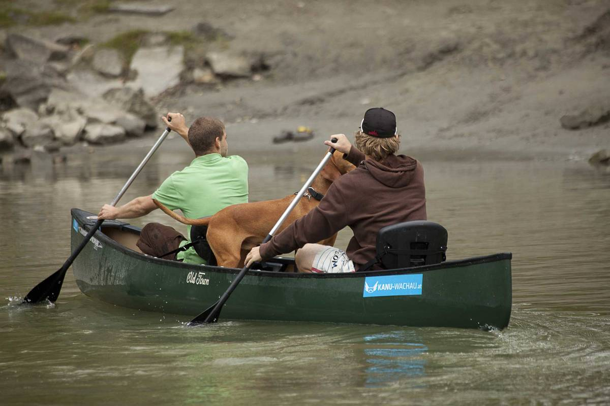Kanu-Fahrer