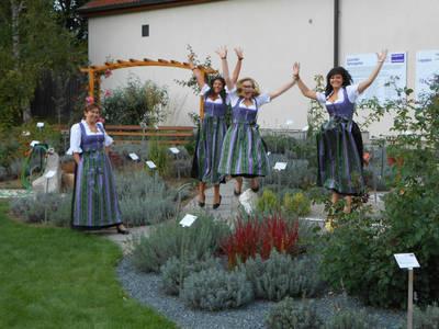 Lavendeldorf Unterdürnbach