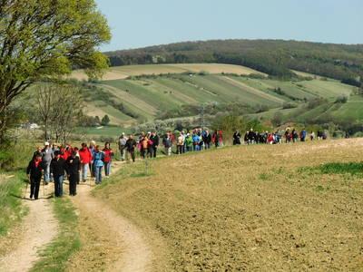 Wandern am Jakobsweg in Sieghartskirchen