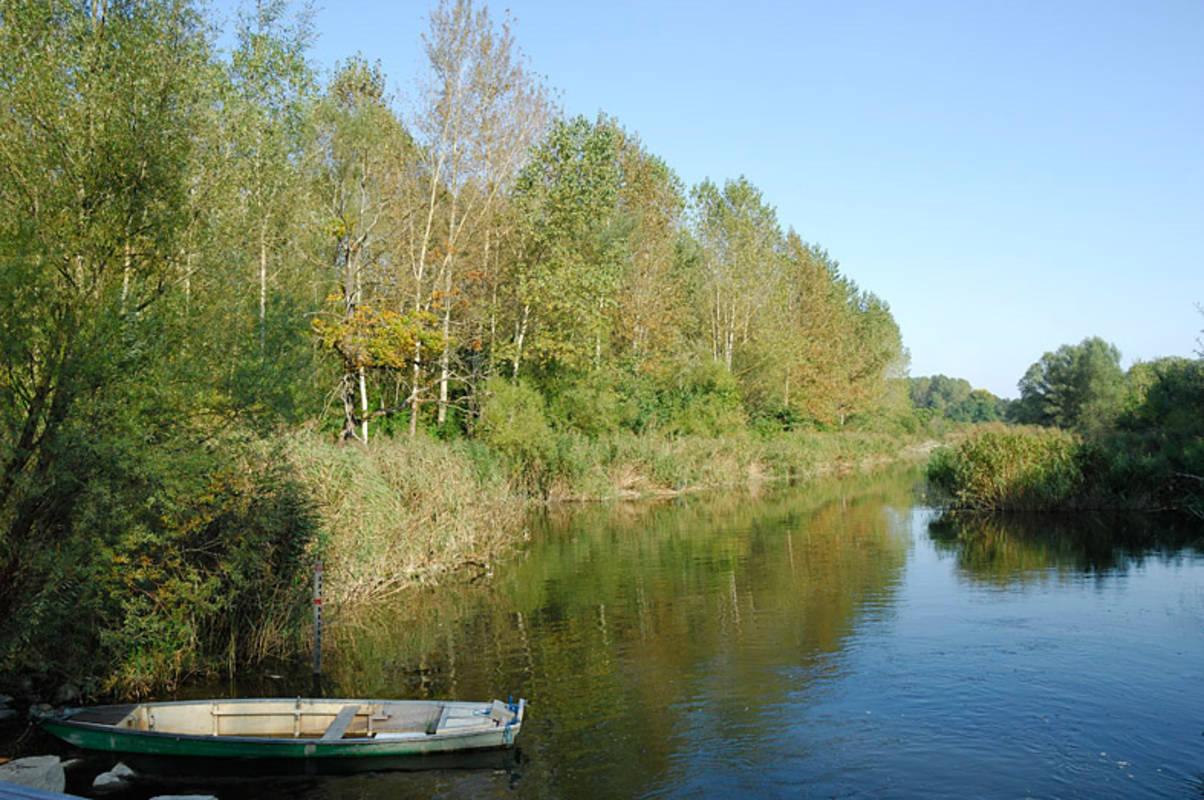 Donau-Au