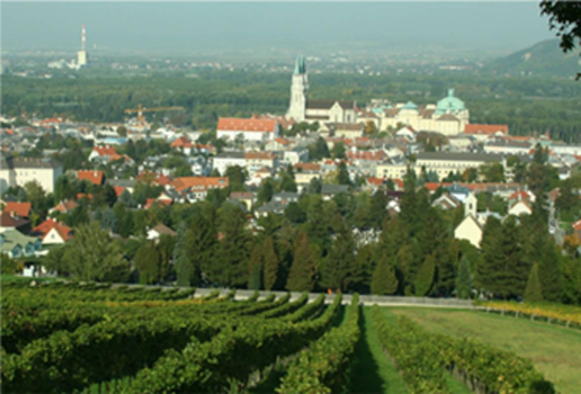 Weingärten Klbg