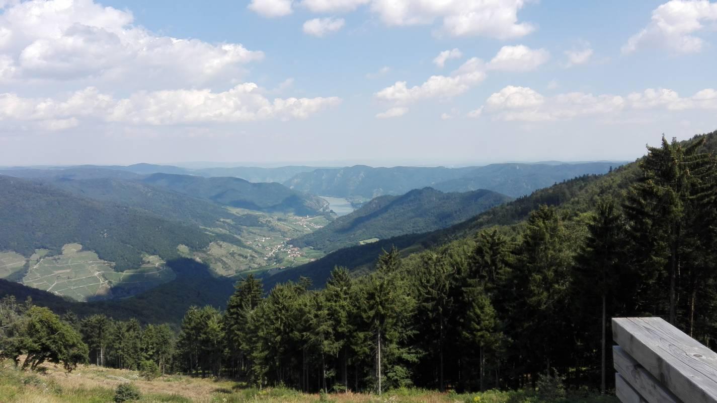 Aussicht im Naturpark Jauerling