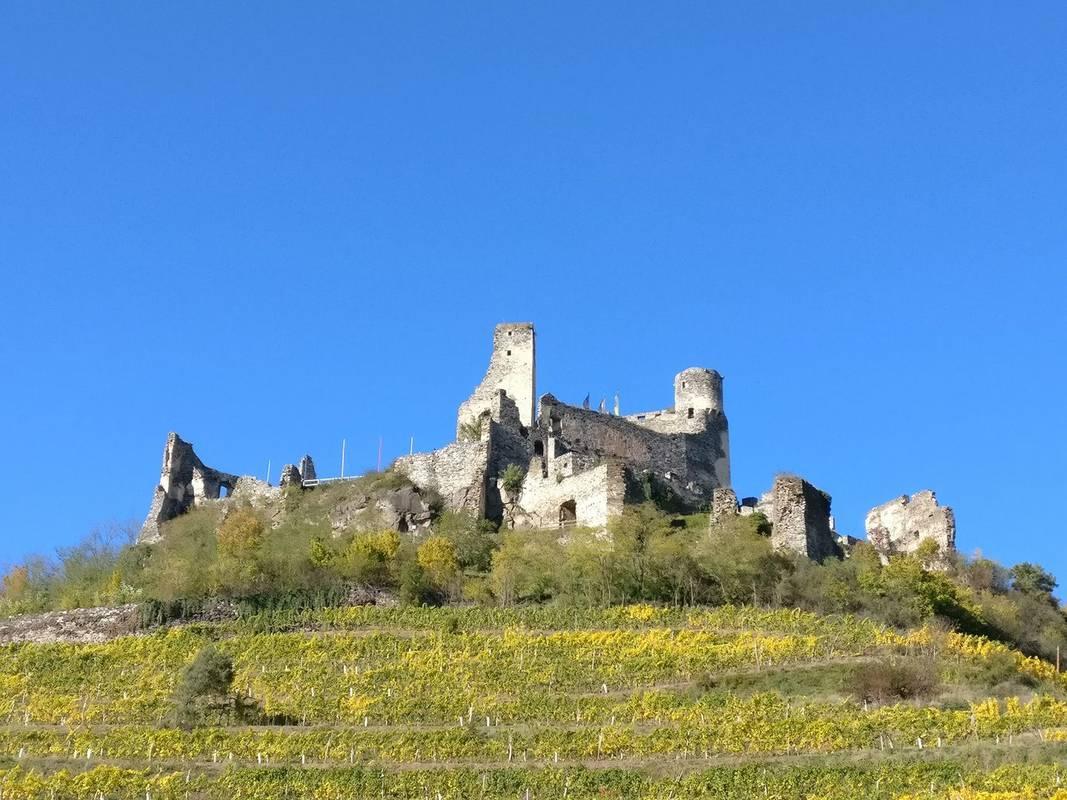 Burgruine Senftenberg - Ansicht aus Senftenberg