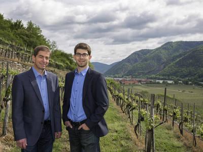 Pichlers in den Weingärten