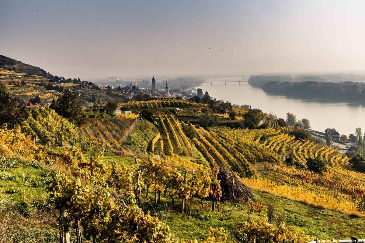 Region um Krems im Herbst