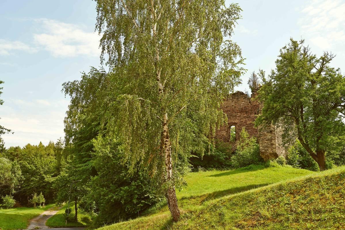 nibelungengau-artstetten-ruine-sommer-9564_klein-c-klaus-engelmayer