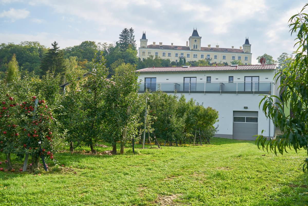 Blick auf Schloss Wolfsberg