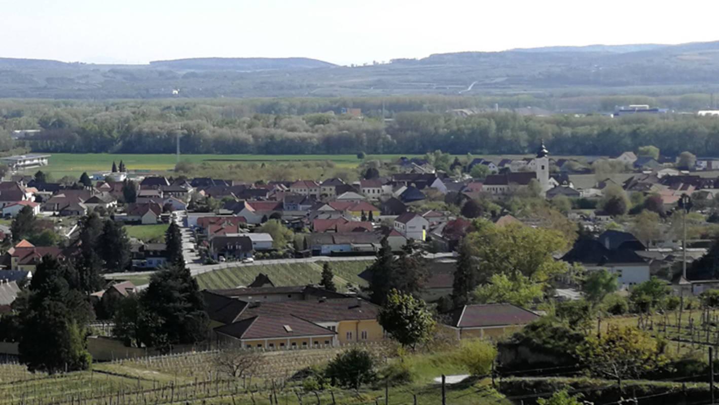 Blick auf Rohrendorf