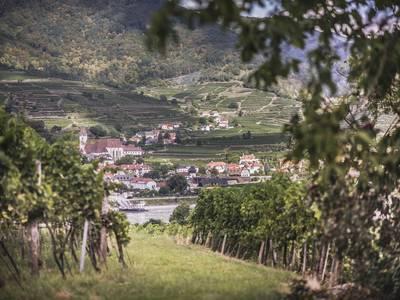 Spaziergang in Rossatz