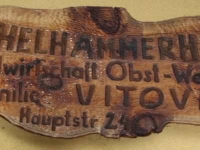 schelhammer1