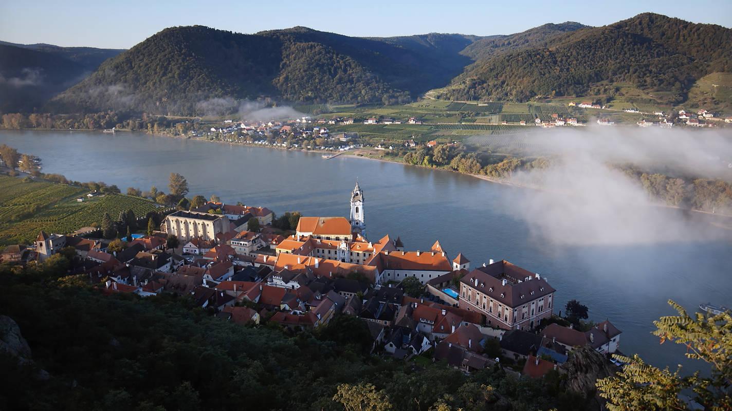 Dürnstein Schloss Morgennebel