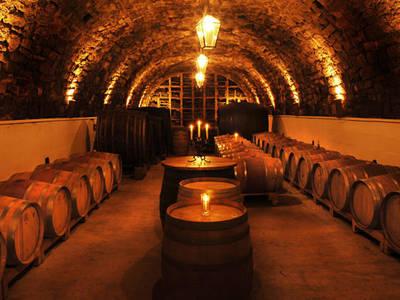 wine cellar Seidl