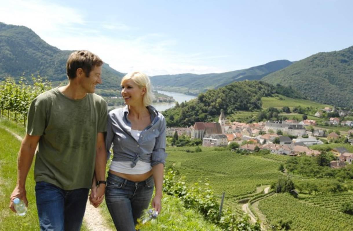 Spitzer Weingärten