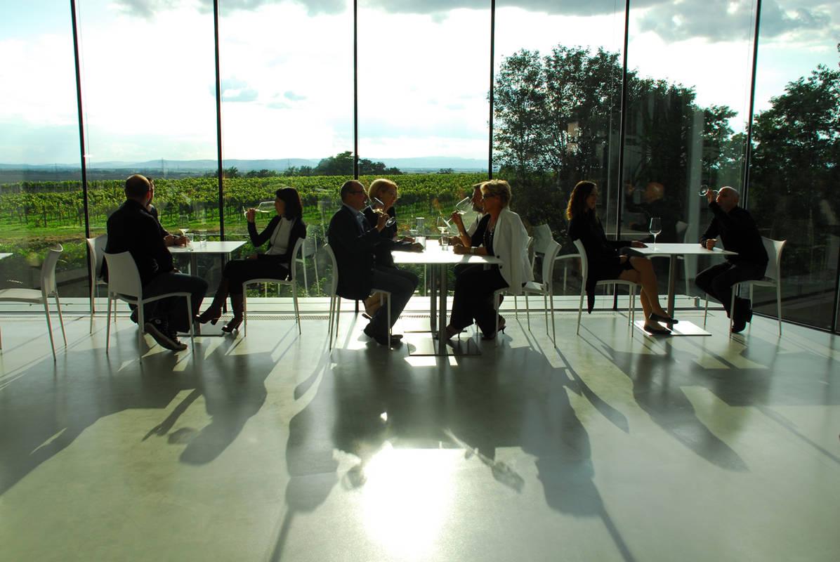 Weritas, Sicht auf Weingärten