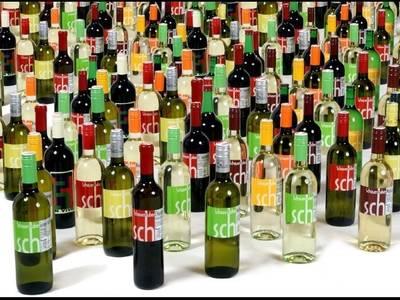 Weinbau Schauerhuber