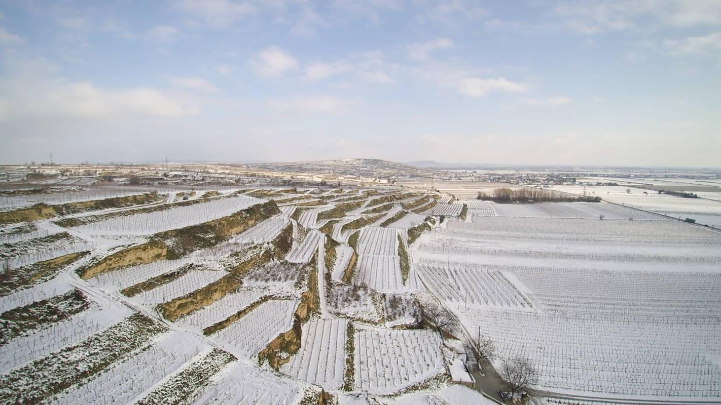Winterwunderland Weingarten