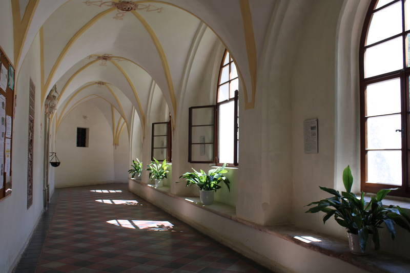 Donau Niederösterreich/Daniela Matejschek